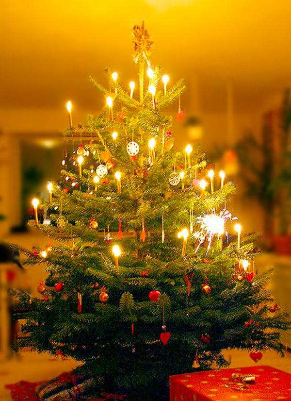 Juletraeet