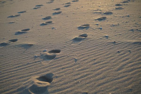 Jernalder  Tiden i skridt  fodspor  beach 630466 1920  Pixabay