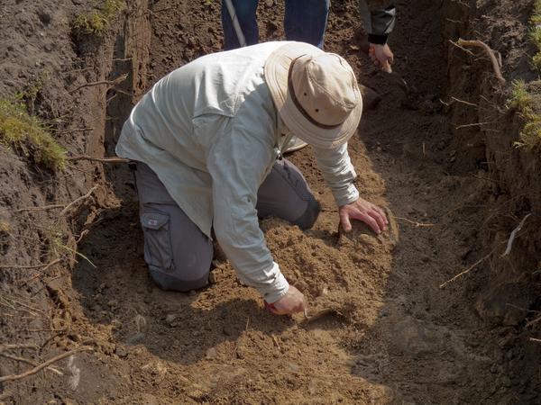 Arkaeolog  Hvor ved vi det fra  COLOURBOX1086462