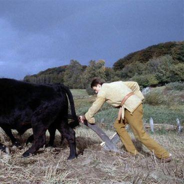 Landbrugets indførelse